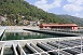 Sundarijal Water Treatment Plant constructed with Japanese ODA loan
